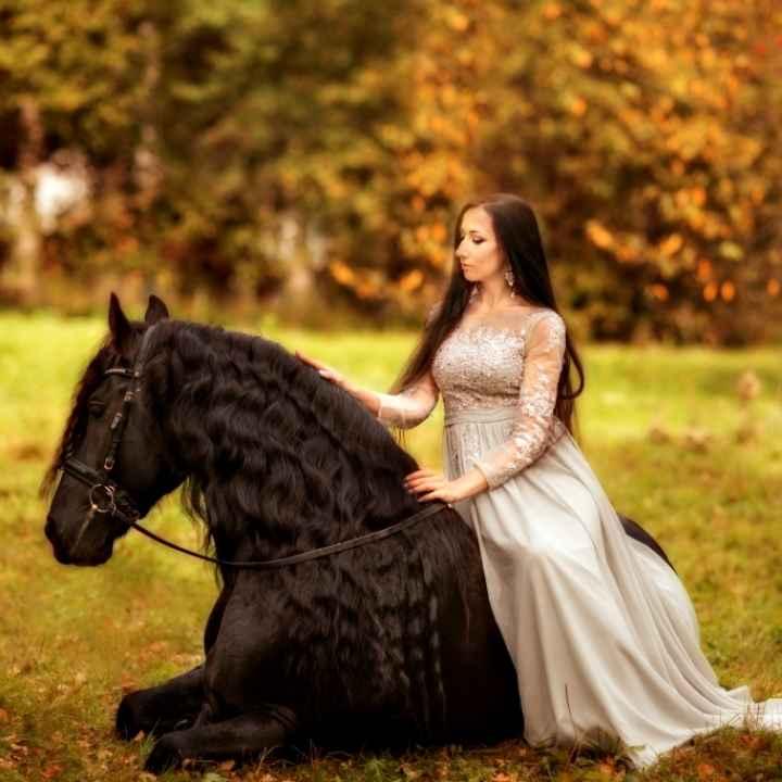 Подарочный сертификат «Фотосессия с лошадью фриз» (действует 1 год)