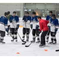 Групповая тренировка и игра в хоккей