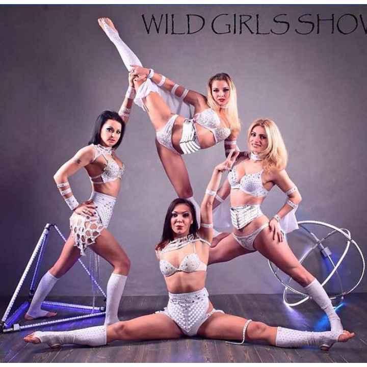 Заказать выступление артистов акробатического шоу Wild Girl's show