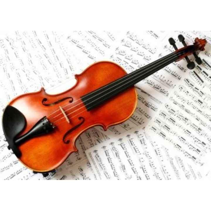 Подарочный сертификат «Обучение игре на скрипке»