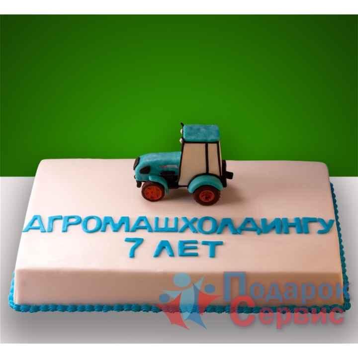 Торт на заказ 105