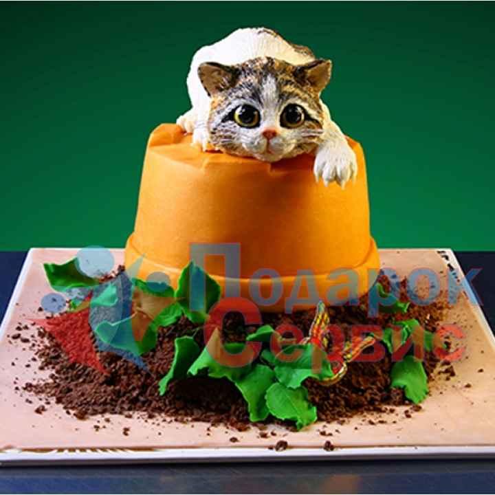 Торт на заказ 881
