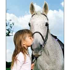 Знакомство с верховой ездой для детей