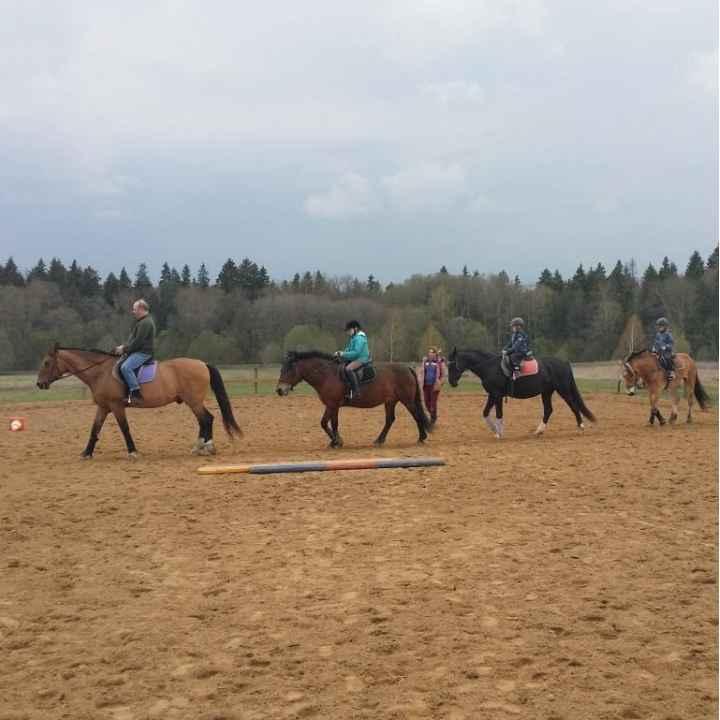 Купить подарочный сертификат на катание на лошадях и пони семьи