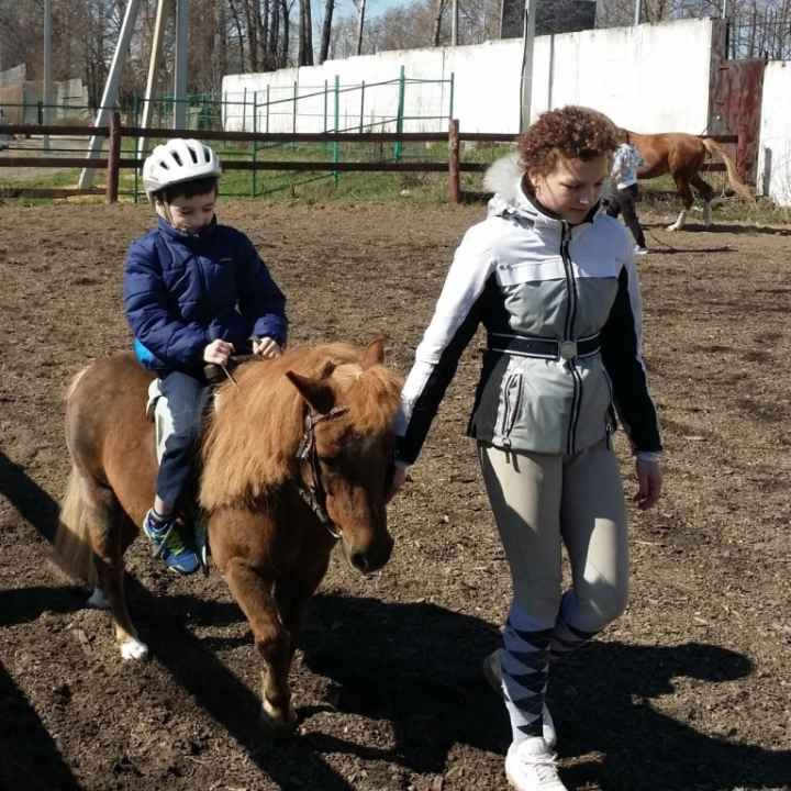 Подарочные сертификаты на катание на лошадях и пони в Балашихе